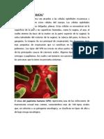PAPILOMA VIRUS BUCAL para cartel.docx