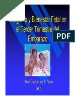 ECOGRAFIA_Y_BIENESTAR_FETAL.pdf