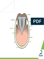 equine-hoof-ground-surface.pdf