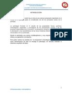 petrologia monografia.docx