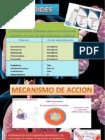 ANTIASMATICOS.pptx