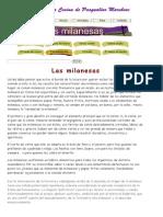 Las milanesas.pdf