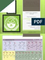 AA Biotechnology.ppt