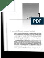 Cap. 1 Salvatore.pdf