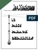 12pasospdf-101013082454-phpapp01.doc