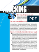 One Pager Gas shale - fracking.pdf