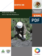 PS Cultivo y procesamiento de sabila.pdf