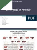 El Mestizaje en America.pptx