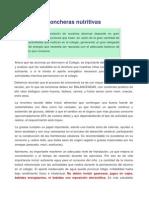 Loncheras nutritivas.pdf