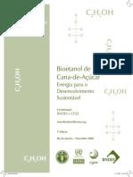 (2008) BNDES & CGEE, Bioetanol de cana-de-açúcar para o desenvolvimento sustentavel.pdf