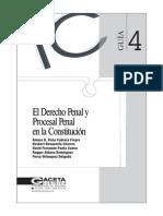 Guia 4 Derecho Penal y Proc Penal en la Constit.pdf