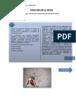 ESTRUCTURA DE LA CIENCIA.docx