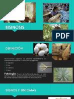 Salud ocupacional - Diapo (1).pptx