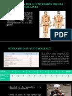 Lesiones por agentes fisicos- med legal waltr.pptx