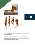 Ginseng Adalah Herbal Yang Memiliki Banyak Khasiat Dan Telah Digunakan Dalam Pengobatan Cina Sejak Ribuan Tahun Lalu