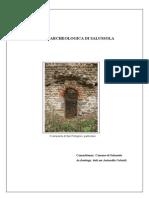Carta archeologica di Salussola