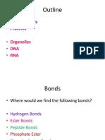 Phospholipids, Proteins, Organelles