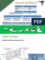 Monitoreo de Quirópteros.pdf