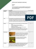 Reflectieformulier Beeldend - Schilderij PDF