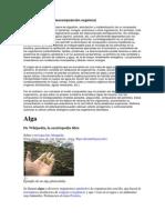 Biodegradación.docx