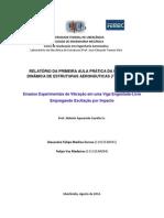 Relatório Laboratorio I - Dinamica de Estruturas - Ensaios Experimentais de Vibração em uma Viga Engastada-Livre Empregando Excitação por Impacto