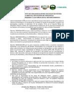 PRONUNCIAMIENTO DE ORGANIZACIONES CASO ERICKA HERNANDEZ.pdf