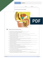 taller santillana reproducción humana.pdf
