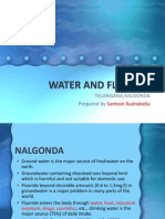 Water and Fluorosis