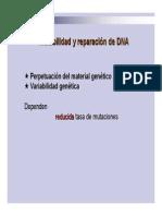 2.1-Sistemas_de_reparacion_13