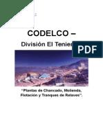 Informe gestión ambiental Plantas de Chancado, Molienda, Flotación y Tranques de Relaves.doc