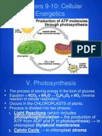 ap - cellular energetics - photosynthesis