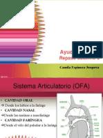 Ayudantia resumen.pdf