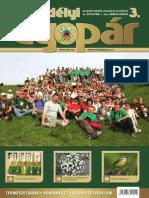 Gyopár 2011-3.pdf