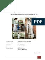 Propuesta Tecnica de Lixiviación Alcalina y Flotacion -.docx