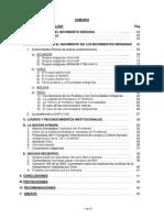MOV INDIGENAS 01 Abr.pdf
