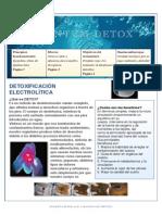 """""""revista detox"""".pdf"""