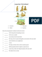 Worksheets Ecosystem Worksheet ecosystems worksheets ecosystem soil worksheet