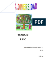 TRABAJO DIVERSIDAD.docx