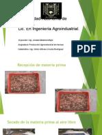 HARINA_DE_CAMARON.pdf