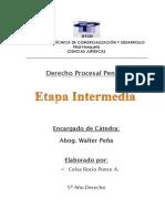 Etapa Intermedia.docx