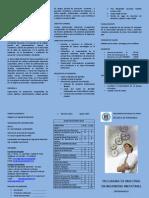 triptico_MAESTRIA ING. INDUSTRIAL.pdf
