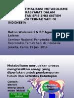 Kajian Optimasi Metabolisme Sbg Syarat Peningkatan Efisiensi Sistem Reproduksi Ternak Sapi