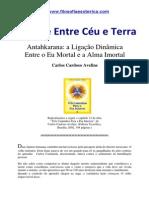 A Ponte Entre Ceu  e Terra.pdf