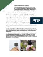 APLICACIONES DEL GRAFENO.docx