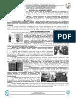 213148085-1-Introducao-ao-Computador.pdf