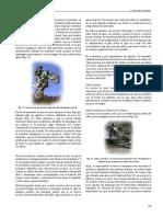 18_pdfsam_manualEnduro.pdf