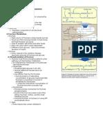 PhCh 127 Metabolism of Monosaccharides & Disaccharides Handout.doc