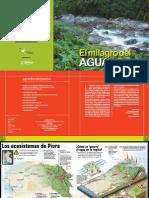 AGUA-MILAGRO PIURA.pdf