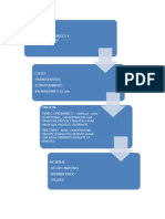 flujograma laboratorio biologia.docx