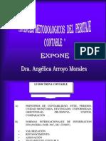 AVANCES METODOLOGICOS  DEL PERITAJE CONTABLE -HUARAZ.ppt